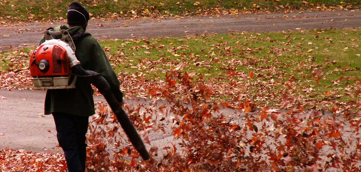 7 Best Gas-Powered Leaf Blowers
