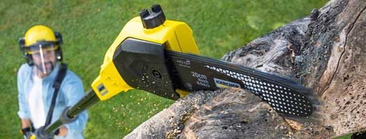 8 Best Cordless Pole Saw