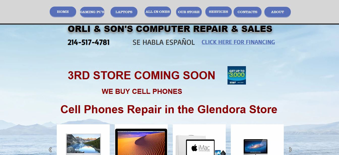 Orli And Sons Computer Repair